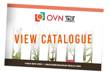 catalogue_over